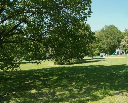 Playground West Wood